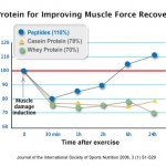 muscle-recovery-from-peptopro