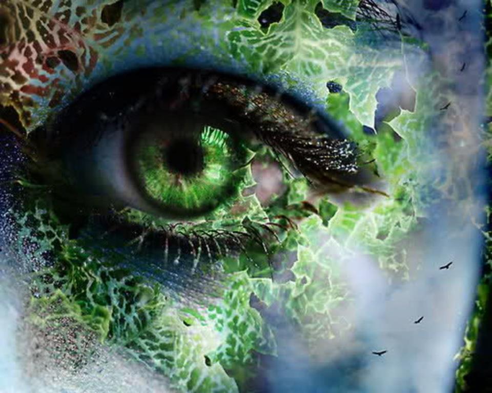 Mother Earth Eye Gestalt Reality