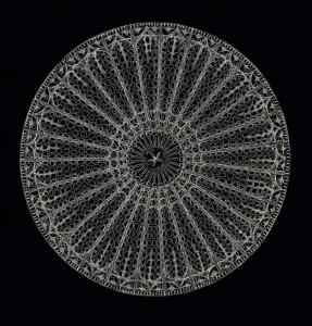 Radiolarian Skeleton