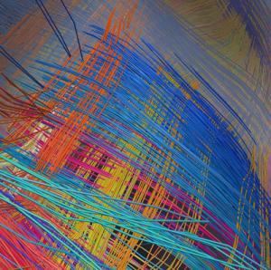 dsi_scan_monkey_brain_structure grid