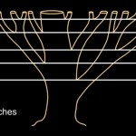fibonacci branches numbers tree