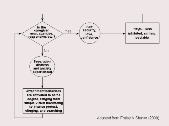 Attachment theory flowchart
