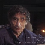 Gabor Mate attachment disease addiction denial video