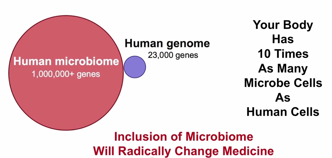 Microbiome genome genes 10 times cells bacteria