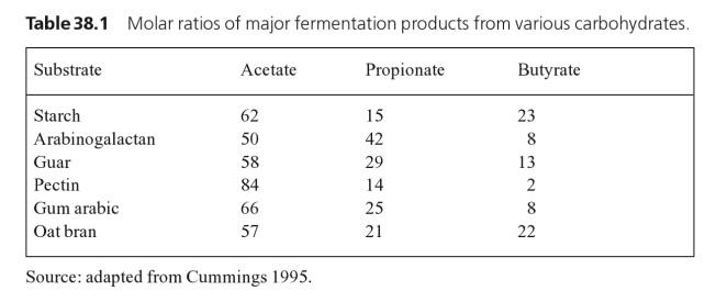 SCFA Resistant Starch Arabinogalactan guar pectin