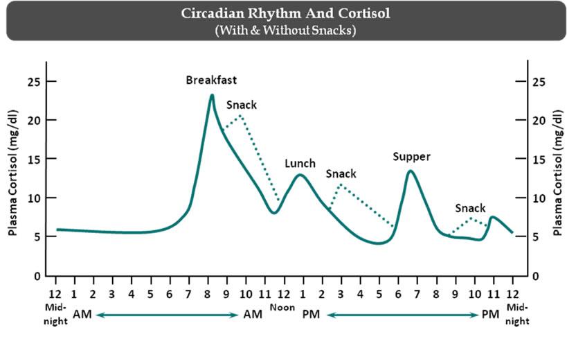 circadian cortisol sleep hack