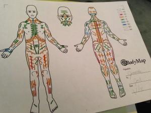 Bodynamic Bodymap