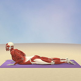 Yoga_Cobra